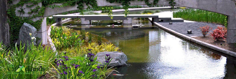 Koi Pond Town Center Waterway
